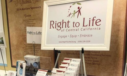 Right to Life Informational Stand